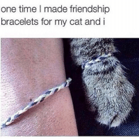 Cats, Time, and Girl Memes: one time made friendship  bracelets for my cat and i Cats are like men in that they both disappear for days after you give them what they want, which makes sense why I like them so much. CallMe