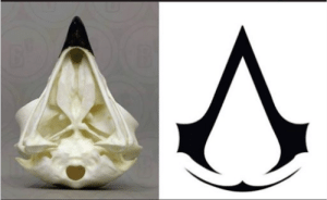 One very interesting thing I discovered is that the symbol of AC is really an eagle skull. I don´t know if you knew that.: One very interesting thing I discovered is that the symbol of AC is really an eagle skull. I don´t know if you knew that.