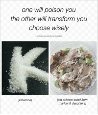 Memes, Chicken, and Ketamine: one will poison you  the other will transform you  choose wisely  a choose your own adventure by malafragiity  own adventure by tmalofrogty  fold chicken salad from  marlow & daughters]  [ketamine] i've been in ny for 20 hours an am already having problems