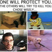 choose wisely..  - Gaming Memes: ONE WILL PROTECT YOU.  THE OTHERS WILL TRY TO KILL YOU.  CHOSE WISELY. choose wisely..  - Gaming Memes