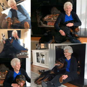 One wouldn't think a big Rottweiler and little old lady would be a great pair but Gus and Grammy absolutely adore each other and are together every minute she visits: One wouldn't think a big Rottweiler and little old lady would be a great pair but Gus and Grammy absolutely adore each other and are together every minute she visits