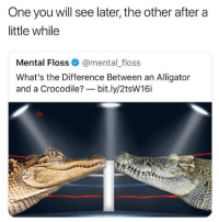 Af, Memes, and Alligator: One you will see later, the other after a  little while  Mental Floss@mental_floss  What's the Difference Between an Alligator  and a Crocodile?-bit.ly/2tsW16i Classic AF