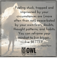 Life, Memes, and Trap: OneWiseLife .com  Feeling stuck, trapped and  imprisoned by your  circumstances are  (more  often than not) exacerbated  by your own fears, doubts  thought patterns, and habits  You can reframe your  mindset to live bigger  ive BETTER  Maria Flynn  OWL  One Wise Life <3 One Wise Life