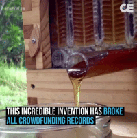 Memes, Evolution, and Record: ONEY FLow  THIS INCREDIBLE INVENTION HAS BROKE  ALL CROWDFUNDING RECORDS Higher Perspective via Collective Evolution