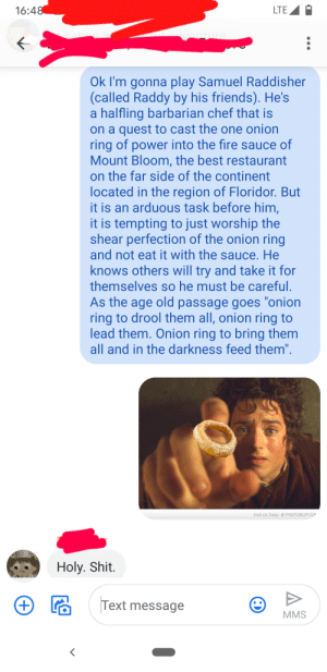 Onion Ring to Rule Them All: Onion Ring to Rule Them All