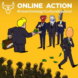 Online swarming action tomorrow (16th of April), on Donald Trump's live stream. We think he is going to announce a bailout of the animal agriculture industry.: Online swarming action tomorrow (16th of April), on Donald Trump's live stream. We think he is going to announce a bailout of the animal agriculture industry.