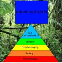 Love, Online, and Validation: ONLINE VALIDATION  Self-  actualization  Esteem  Love/belonging  Safety  Physiological
