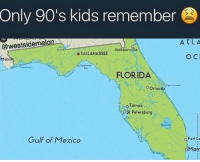 Florida, Kids, and Mexico: Only 90's kids remember  X K  ATLA  @westsideme  Jacksonville  o TALLAHASSEE  Mobi  FLORIDA  OOrlando  tampa  OSt Petersburg  Gulf of Mexico  o Fort o  。Miary F