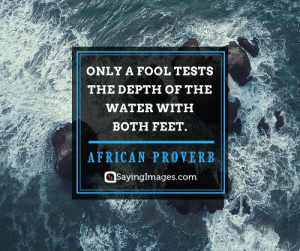 20 Fools Quotes That'll Change Your Thinking #sayingimages #foolsquotes: ONLY A FOOL TESTS  THE DEPTH OF THE  WATER WITH  BOTH FEET.  AFRICAN PROVERB  Sayinglmages.com 20 Fools Quotes That'll Change Your Thinking #sayingimages #foolsquotes