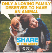 Every pet deserves to have a home but not every home deserves to have a pet.: ONLY A LOVING FAMILY  DESERVES TO HAVE  AN ANIMAL  SHARE  IF YOU AGREE  Healthy  With Dr. Karen Becker  Healthy Pets,Mercola Every pet deserves to have a home but not every home deserves to have a pet.