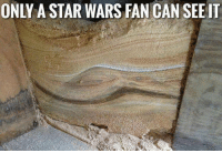 """Memes, Star Wars, and Http: ONLY A STAR WARS FAN CAN SEE IT <p>Can you see it? via /r/memes <a href=""""http://ift.tt/2uHfq2S"""">http://ift.tt/2uHfq2S</a></p>"""