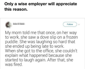 OnLy a WiSe EmPlOyeR WilL aPpReCiAtE tHiS ReAsOn: Only a wise employer will appreciate  this reason.  Follow  My mom told me that once, on her way  to work, she saw a dove slip on a frozen  puddle. She was laughing so hard that  she ended up being late to work.  When she got to the office, she couldn't  explain what happened because she  started to laugh again. After that, she  was fired. OnLy a WiSe EmPlOyeR WilL aPpReCiAtE tHiS ReAsOn