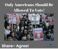 Racism, Trump, and Fight: Only Americans should Be  Allowed To Vote!  BUILD THE  RESISTANCE  STO  AGAINS  TRUMP  NO MY  FIGHT  RACISM  CK TH  Share Agree!  POLITICAL INSIDER