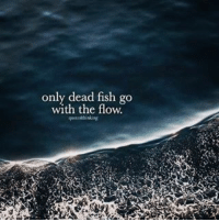 go with the flow: only dead fish go  with the flow.