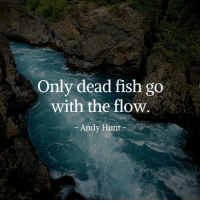(y): Only dead fish go  with the flow.  Andy Hunt (y)