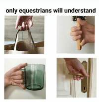 True, Will, and You: only equestrians will understand Is this true for you?