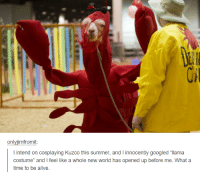 """Alive, Google, and Ups: only imfromit  l intend on cosplaying Kuzco this summer, and innocently googled """"llama  costume"""" and I feel like a whole new world has opened up before me. What a  time to be alive."""