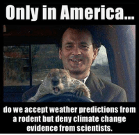 """America, Memes, and Groundhog Day: Only in America...  do we accept weather predictions from  a rodent but deny climate chang  evidence from scientists. <p>Happy Groundhog Day via /r/memes <a href=""""http://ift.tt/2kVfm8v"""">http://ift.tt/2kVfm8v</a></p>"""