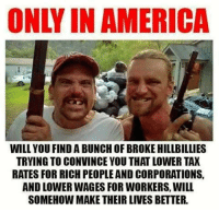 America, Memes, and Taxes: ONLY IN AMERICA  WILL YOU FIND A BUNCH OF BROKE HILLBILLIES  TRYING TO CONVINCE YOU THAT LOWER TAX  RATES FOR RICH PEOPLEAND CORPORATIONS,  AND LOWER WAGES FOR WORKERS, WILL  SOMEHOW MAKE THEIR LIVES BETTER.