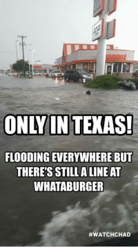 Is this true?: ONLY IN TEKAS!  FLOODING EVERYWHERE BU  THERE'S STILLA LINE AT  WHATABURGER  Is this true?