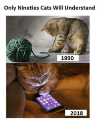 Past v/s future: Only Nineties Cats Will Understand  1990  2018 Past v/s future
