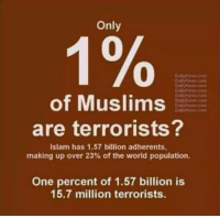 Food, Memes, and Islam: Only  of Muslims  are terrorists?  Islam has 1.57 billion adherents  making up over 23% of the world population.  One percent of 1.57 billion is  15.7 million terrorists. Food for thought.