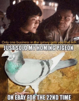 eBay, Business, and Time: Only one business in the galaxy gets you this rich.  JUST SOLD MY HOMING PIGEON  ON EBAY FOR THE 22ND TIME Only one business in the galaxy gets you this rich.