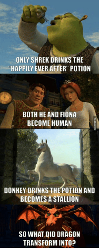 Only Shrek Drinks The Happily Ever After Potion Both He And Fiona Become Human Donkey Drinks The Potion And Becomes A Stallion So What Did Dragon Transform Into Donkey Meme On