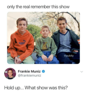me irl by SEND_OESTROGEN_PLS MORE MEMES: only the real remember this show  um  @pubity  Frankie Muniz  @frankiemuniz  Hold up... What show was this? me irl by SEND_OESTROGEN_PLS MORE MEMES