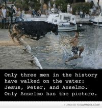 Memes, 🤖, and Three: Only three men in the history  have WaLked on the Water  Jesus, Peter  and Anselmo  Only Anselmo has the picture  YU NO GO TO DAMNLOLCOM? Only Anselmo Has The Picture
