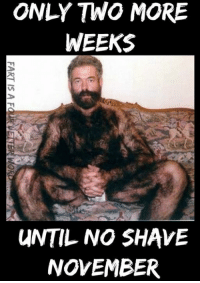 ONLY TWO MORE  WEEKS  UNTIL NO SHAVE  NOVEMBER  AR  MS  HE  SB  OK  OM  NE  NV  LO  FART IS A FauRUETTER WOR