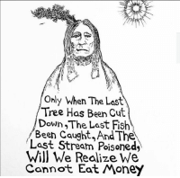 Be a PROTECTOR, not a parasite. #NoDAPL: Only When The Last  Tree Has Been Cu  A  Down The Last Fish  Been caught, And The  Last Stream Poisoned,  Will We Realize We  Cannot Eat Money Be a PROTECTOR, not a parasite. #NoDAPL