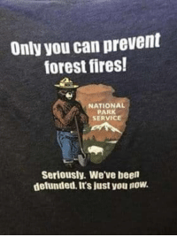 Its just you now: Only you can prevent  forest fires!  NATIONAL  PARK  SERVICE  Seriously. We've been  defunded. It's just you now. Its just you now