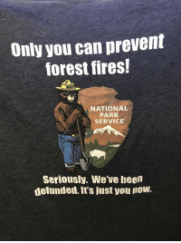 Only you: Only you can prevent  forest fires!  WOK  NATIONAL  PARK  SERVICE  Seriously. We've been  defunded. It's just you now Only you