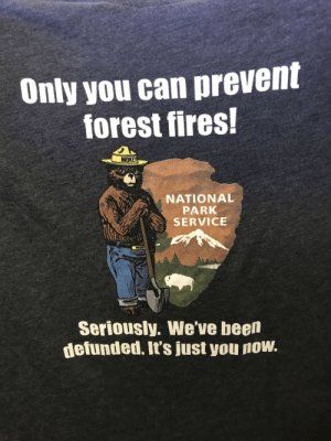 Been, Forest, and Can: Only you can prevent  forest fires!  WOK  NATIONAL  PARK  SERVICE  Seriously. We've been  defunded. It's just you now. This is appropriate