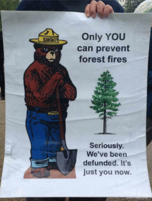 Poor Smokey: Only YOU  SMOKEY  can prevent  forest fires  NIMIM  USMOR  Seriously.  We've been  defunded. It's  just you now. Poor Smokey