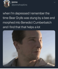 Bear Grylls: onno  @jonnohopkins  when I'm depressed I remember the  time Bear Grylls was stung by a bee and  morphed into Benedict Cumberbatch  and I find that that helps a lot