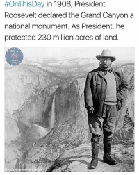 Memes, 🤖, and Grand Canyon:  #OnThisDay in 1908, President  Roosevelt declared the Grand Canyon a  national monument. As President, he  protected 230 million acres of land.  etodayinamericanhiston Teddy was the man! Pictured at Glacier Point, 1903. Credit: @todayinamericanhistory