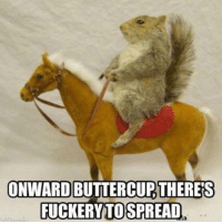 Spread, Onward, and Buttercup: ONWARD BUTTERCUP THERES  FUCKERYTO  SPREAD