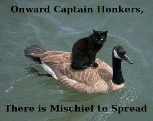 Thought, Spread, and This: Onward Captain Honkers,  There is Mischief to Spread Thought this belonged here