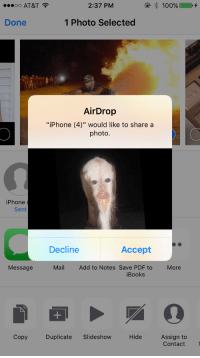 "Iphone, Target, and Tumblr: OO AT&T  2:37 PM  Done  1 Photo Selected  AirDrop  ""iPhone (4)"" would like to share a  photo.  iPhone  Sent  Decline  Accept  Message  MailAdd to Notes Save PDF to  More  iBooks  CopyDuplicate Slideshow Hide Assign to  Contact taquito:  im never turning my airdrop on again"