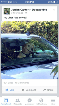 Love, News, and Target: oo Bell LTE  7:06 PM  39%  Jordan Cantor  3 hours ago  Dogspotting  my uber has arrived  994 Likes 19 Comments  I Like  Comment  Share  News Feed Requests Messenger Notifications More mrangrysmiley: i would love this to be my uber ride