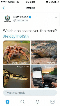meirl: oo Optus 4G 5:35 pm  O 38%10,  Tweet  NSW Police  NSW Police Foree  Which one scares you the most?  #FridayThe13th  World's furriest nope  Angry log  Danger noodle  Texting driver  Tweet your reply meirl