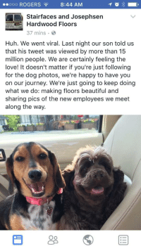 "<p>Wholesome Facebook post! via /r/wholesomememes <a href=""http://ift.tt/2vzjUdl"">http://ift.tt/2vzjUdl</a></p>: oo ROGERS8:44 AM  Stairfaces and Josephsen  rdwood Floors  37 mins  Huh. We went viral. Last night our son told us  that his tweet was viewed by more than 15  million people. We are certainly feeling the  love! It doesn't matter if you're just following  for the dog photos, we're happy to have you  on our journey. We're just going to keep doing  what we do: making floors beautiful and  sharing pics of the new employees we meet  along the way.  Oo <p>Wholesome Facebook post! via /r/wholesomememes <a href=""http://ift.tt/2vzjUdl"">http://ift.tt/2vzjUdl</a></p>"