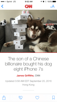 Anaconda, cnn.com, and Iphone: oo Sprint LTE  9:52 AM  O 100%  CNN  Phone  iPhone  The son of a Chinese  billionaire bought his dog  eight iPhone 7s  James Griffiths, CNN  Updated 3:58 AM EDT September 20, 2016  Hong Kong heterophobiac:Good, he deserves them