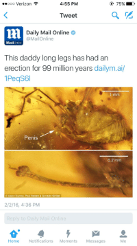"Doctor, Target, and Tumblr: oo0 Verizon *  4:55 PM  75%)  Tweet  Daily Mail Online  @MailOnline  MailOnline  This daddy long legs has had an  erection for 99 million years dailym.ai  1PeqS6l  1 mm  Penis  0.2 mm  Jason Dunlop, Paul Selden & Gonzalo Giribet  2/2/16, 4:36 PM  Home Notifications Moments Messages  Me <p><a class=""tumblr_blog"" href=""http://dreamingofcossackia.tumblr.com/post/138577228644"" target=""_blank"">dreamingofcossackia</a>:</p> <blockquote> <p><a class=""tumblr_blog"" href=""http://anunreliablesource.tumblr.com/post/138577044403"" target=""_blank"">anunreliablesource</a>:</p> <blockquote> <p><a class=""tumblr_blog"" href=""http://exxos-von-steamboldt.tumblr.com/post/138575437925"" target=""_blank"">exxos-von-steamboldt</a>:</p> <blockquote> <p><a class=""tumblr_blog"" href=""http://anunreliablesource.tumblr.com/post/138574144213"" target=""_blank"">anunreliablesource</a>:</p> <blockquote> <p><a class=""tumblr_blog"" href=""http://svlyan.tumblr.com/post/138571467185"" target=""_blank"">svlyan</a>:</p> <blockquote> <p>congrats</p> </blockquote> <p>He should call a doctor <br/></p> </blockquote> <p>Seek immediate help from your entopaleontologist if you experience an erection lasting more than 4 million years.<br/></p> </blockquote> <p>Hahaha</p> </blockquote> <h2><b>THIS BOY GOTTA</b></h2> <figure class=""tmblr-full"" data-orig-height=""408"" data-orig-width=""540""><img src=""https://78.media.tumblr.com/1d42f5b30dffc1e40d8f2a95264ed654/tumblr_inline_o1y7f1ZHoh1sqxdth_540.jpg"" data-orig-height=""408"" data-orig-width=""540""/></figure></blockquote>"