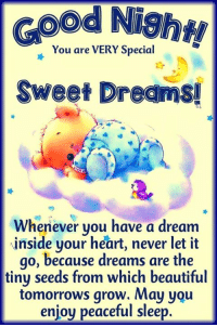 Good Night and Sleep tight!: ood Night  You are VERY Special  Sweet Dreams  Whenever you have a dream  inside your heart, never let it  go, because dreams are the  tiny seeds from which beautiful  tomorrows grow. May you  enjoy peaceful sleep. Good Night and Sleep tight!