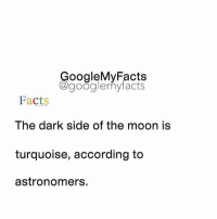 Dark Side of the Moon, Facts, and Google: oogleMy Facts  google my facts  Facts  The dark side of the moon is  turquoise, according to  astronomers. Do you believe in Aliens ? Share 🔽