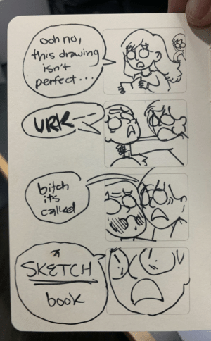 It's called that for a reason!!! [OC]: ooh no,  this drawing  isn't  perfect..  URK  bitch  it's  called  SKETCH  book It's called that for a reason!!! [OC]