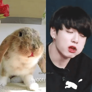 Tumblr, Blog, and Com: ook.ah  OON) btsboyzzzz:  I SEE NO DIFFERENCE